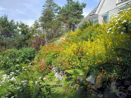Part of the very colourful garden at Gairloch View Guest House with the terrace area directly above.